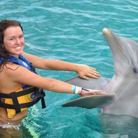 Dolphin Encounter at Maroma, Riviera Maya